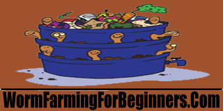 worm farming for beginners